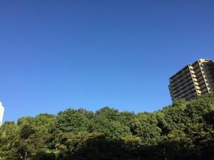 写真 2016-10-07 7 32 40